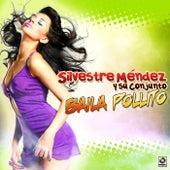 Baila Pollito by Silvestre Mendez
