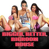 Bigger, Better, Bigroom House by Various Artists