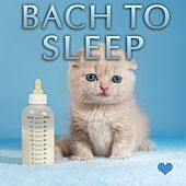 Bach to Sleep - Bedtime Baby Songs by Bedtime Baby