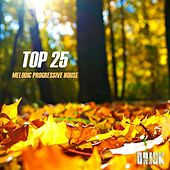 Melodic Progressive House - Top 25 by Various Artists