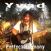 Perfect Harmony by Yvad