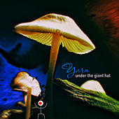 Under the Giant Hat by Yarn