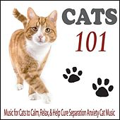 Cats 101: Music for Cats to Calm, Relax, & Help Cure Separation Anxiety Cat Music by Robbins Island Music Group