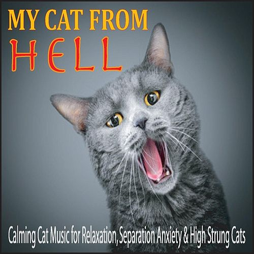 My Cat from Hell: Calming Cat Music for Relaxation, Separation Anxiety & High Strung Cats by Robbins Island Music Group