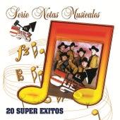 Serie Notas Musicales... 20 Super Exitos by Juez