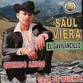 20 Exitos by Saul Viera