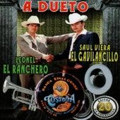 A Dueto by Saul Viera