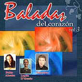 Baladas del Corazon vol 13 by Various Artists