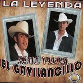 La Leyenda by Saul Viera