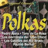 Polkas by Various Artists