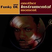Another Instrumental Moment by Funky DL