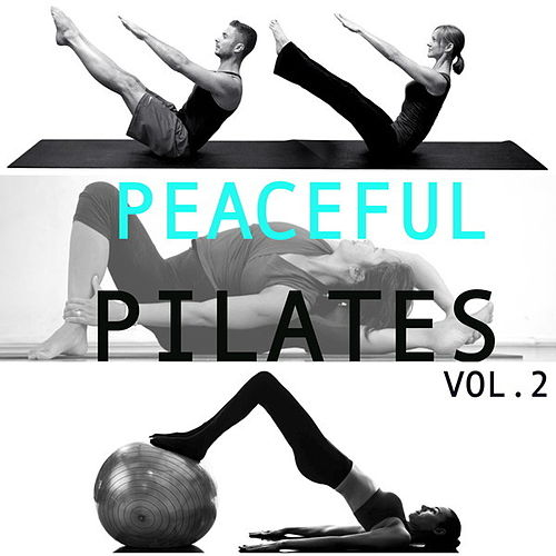 Peaceful Pilates, Vol. 2 by Wildlife