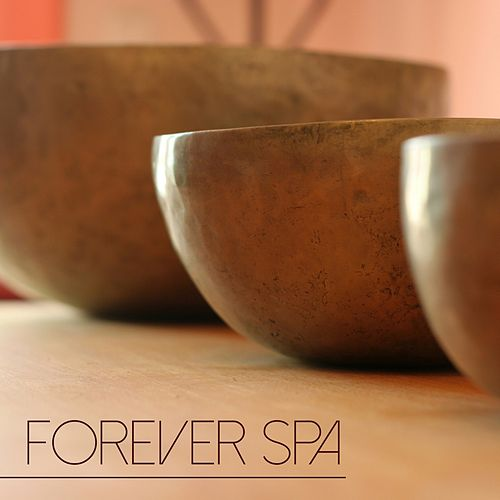 Forever Spa - Relaxing Spa Music & Soothing Songs for Relaxing Moments, Spas and Beauty Centers by Spa Music Masters
