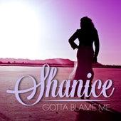Gotta Blame Me by Shanice