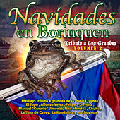 Navidades en Borinquen: Tributo a los Grandes Volume 2 by Various Artists