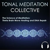 528 Hz Theta Brainwave Healing and Dna Repair by Tonal Meditation Collective