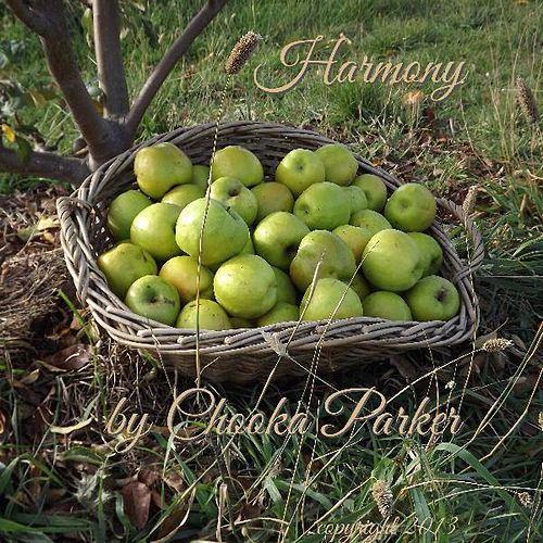 Harmony by Chooka Parker