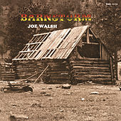 Barnstorm by Joe Walsh