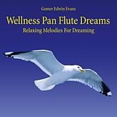 Wellness Pan Flute Dreams: Relaxing Melodies for Dreaming by Gomer Edwin Evans