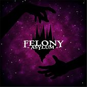 Asylum by Felony