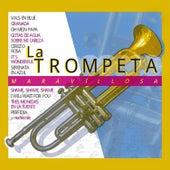 La Trompeta Maravillosa by Various Artists