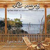 Favorite Melodies of Yehuda Poliker's Famous Songs by Various Artists