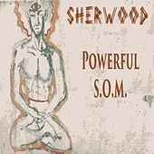 Powerful S.O.M. by Sherwood