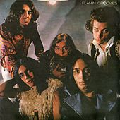 Flamin' Groovies by The Flamin' Groovies