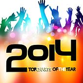 Top Charts of the Year 2014 by Various Artists