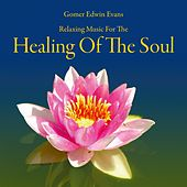 Healing of the Soul: Music for Recreation by Gomer Edwin Evans