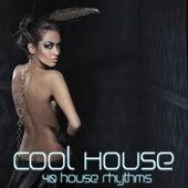 Cool House (40 House Rhythms) by Various Artists