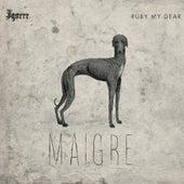 Maigre - EP by Igorrr