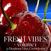 Fresh Vibes, Vol. 1 by Various Artists