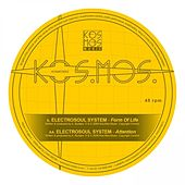Form Of Life / Attention by Electrosoul System