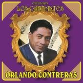 Estos Son los Cantantes by Orlando Contreras