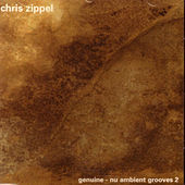 Nu Ambient Grooves 2 by Chris Zippel