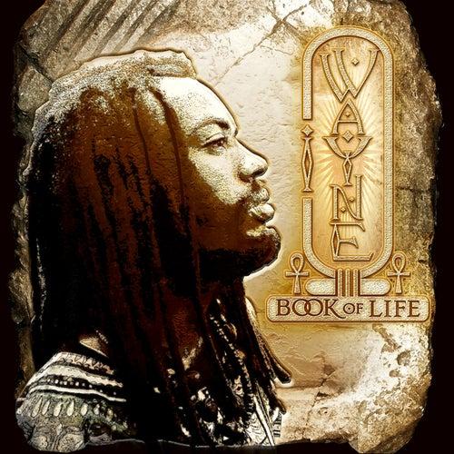 Book Of Life by I Wayne