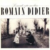 Le Monde Entre Mes Bras by Romain Didier