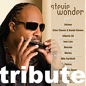 Letra & Música: A Tribute To Stevie Wonder by Various Artists