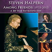 Among Friends: 1975-2015 (Bonus Version) [Revised] by Steven Halpern