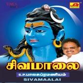 Sivamaalai by S.P. Balasubrahmanyam