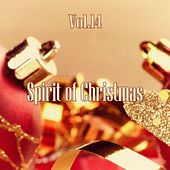 Spirit of Christmas - Vol. 14 von Various Artists