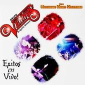 Exitos (En Vivo) by Grupo Vennus