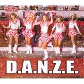 D.A.N.Z.E. by Funky Marys