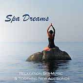 Spa Dreams - Relaxation Spa Music & Soothing New Age Songs by Various Artists