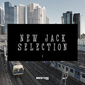 New Jack selection, Vol. 1 by Various Artists