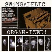 Organized! by Swingadelic