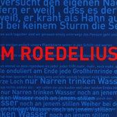 Vom Nutzen der Stunden - Lieder vom Steinfeld Vol. 3 by Roedelius