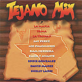 Tejano Mix by Various Artists
