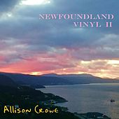Newfoundland Vinyl II by Allison Crowe